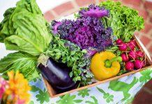 Warzywa, które warto podawać dzieciom